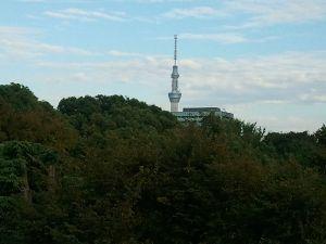 上野の森とスカイツリー
