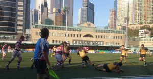 Abacus Kowloon vs Borrelli Walsh Tigers