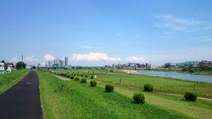 多摩川の土手