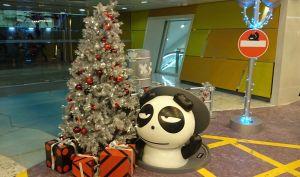 香港 クリスマス視察