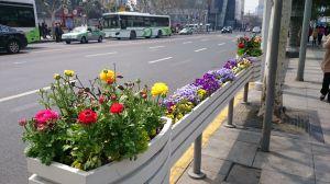 上海行ってきた 4日目の1