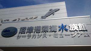 沼津港深海水族館に行ってきた