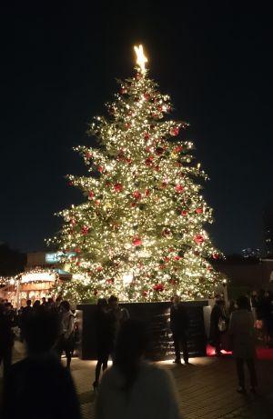 2015 クリスマスイルミネーション 1