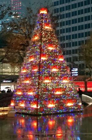 2016 クリスマスイルミネーション 5