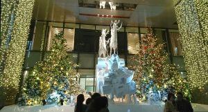 2016 クリスマスイルミネーション 6