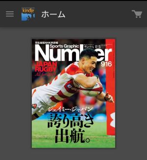 Number 916 ~ JAPAN RUGBY All for  2019