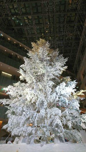 2017 クリスマスイルミネーション