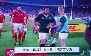 RWC2019 準決勝1日目 WALES vs SOUTH AFRICA