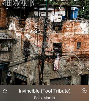 Invincible / Felix Martin