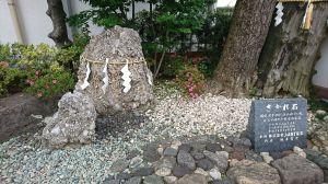 お散歩 神田明神~上野
