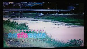 『京都妖気保安協会』ケース4「鴨川ミッドサマードリーム」