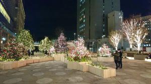 今年のクリスマスツリー 2